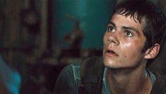 GIFs of Dylan O'Brien in The Maze Runner | POPSUGAR Entertainment