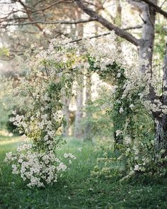 spring wedding white and green flora arch, garden inspired wedding ceremony inspiration, botanical and lush wedding ceremony decor Floral Wedding, Wedding Flowers, Wedding White, Spring Wedding, Luxury Wedding, Wedding Flower Inspiration, Wedding Ideas, Wedding Ceremony Decorations, Wedding Arches