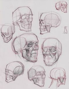 figuredrawing.info_news: Head Studies