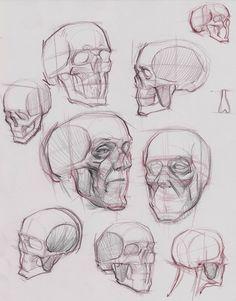 Skull invention by Michael Hampton