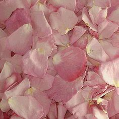 Bridal Pink FD Rose Petals (30 Cups)