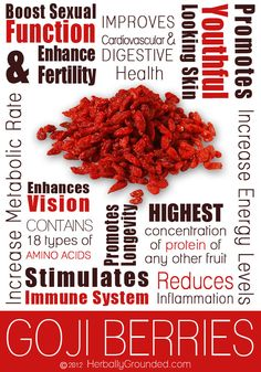 Goji berry is a small fruit full of interesting properties to improve your health in various parts of your body. Check out the main benefits of Goji Berry. Zeal Wellness, Health And Wellness, Health Tips, 200 Calories, Benefits Of Berries, Protein Fruit, Coconut Health Benefits, How To Increase Energy, For Your Health