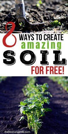 Cheap Garden Ideas: 8 simple ways to create amazing soil for FREE! Organic Gardening Tips | Vegetable Garden Ideas