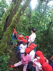 Volunteer Abroad Costa Rica with http://www.Abroaderview.org