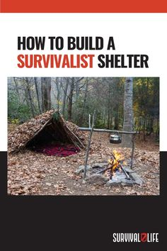 Natural Structures, Survival Shelter, Canning, House Styles, Building, Nature, Naturaleza, Buildings, Home Canning
