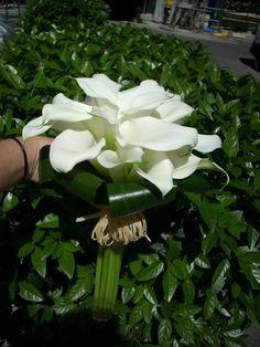 Bouquet de calas blancas. Descubre en este post nuestras propuestas de ramos de novia para vestidos de las colecciones 2013 #ramosdenovia #bodas