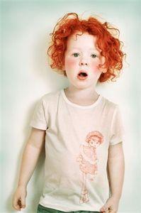 Image of Tee shirt OLA OLEK différents modèles