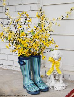 old rubber rain boots filled with forsythia branches | 10 Adorable Rain Boot Planter Ideas #spring