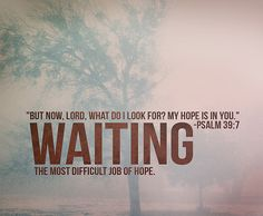 Waiting can really be difficult but when it's over, you won't be able to contain all its fruits. :)