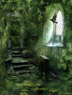 Paadje met stenen trapje in een tuin