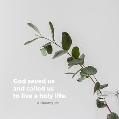 2 Timothy God is the one who saved and called us with a holy calling. This wasn't based on what we have done, but it was based on his own purpose and grace that he gave us in Christ Jesus before time began. Scripture Verses, Bible Quotes, Scriptures, 2 Timothy 1 9, Facing Fear, Youversion Bible, Jesus Cristo, Gods Grace, Verse Of The Day