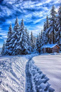 Winter, Sarajevo, Bosnia and Herzegovina