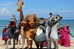 Madagascar Character Performance at Andilana Beach Resort in #Madagascar.