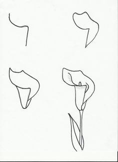 Art class ideas: drawing a flower drawing lessons, art lessons, drawing Drawing Lessons, Drawing Techniques, Drawing Tips, Drawing Sketches, Art Lessons, Painting & Drawing, Sketching, Drawing Ideas, Step By Step Drawing