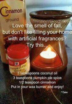 DIY Homemade natural blend of fall scents for your wax burner. Limpieza Natural, Do It Yourself Baby, Sent Bon, Home Scents, Fall Scents, Theme Noel, Happy Fall Y'all, Cool Ideas, Pumpkin Pie Spice