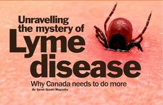 Unravelling the mystery of Lyme disease: Why Canada needs to do more #LymeDiseaseChallenge #LymeIsEverywhere