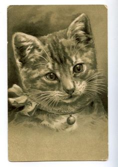 Cat Kitten w Bow Bell Portrait Vintage Embossed PC | eBay