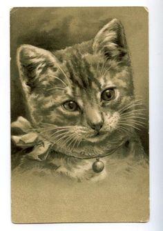 Cat Kitten w Bow Bell Portrait Vintage Embossed PC | eBay