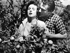 Jean Peters and Rossano Brazzi - Three Coins in the Fountain