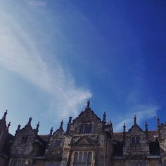 Wakehurst Place & Gardens.. #wakehurstplace #nature #gardens #nationaltrust #seasonal #spring #landscape #mansion #historic #history #architecture #countryside #colourful #sunny #beautyspot #scenic #england #beautiful #contrast #sussex