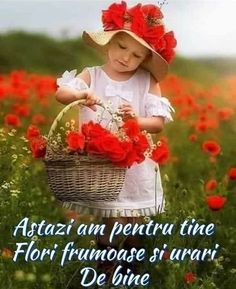 Good Morning Friends Images, Good Night Images Hd, Good Morning Beautiful Quotes, Good Morning Picture, Good Morning Flowers, Good Morning Messages, Good Morning Greetings, Morning Pictures, Good Morning Good Night