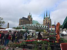 3.5. Erfurt