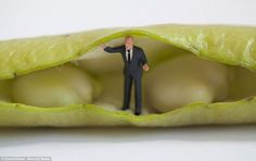"""The artist David Gilliver called it """"The Small Series"""" and it has been a big hit online. He uses tiny figurines from different model toy sets and household items to create imaginary scenes. The results are these surreal photos that are simply delightful and refreshing. Each fantastic scenario depicts small people that are chilling out …"""