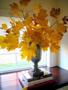 Every fall mom used to take us to detweiller park to pick branches which we then put in to large vases all around the house..we loved it soooo much!!!!.