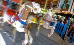 Unlimited Rides for Four Kids with Options for Two Popcorns or 50 Ride Tickets at Kiddie Park (Up to Off) Natural Bridge Caverns, San Antonio Vacation, Stuff To Do, Things To Do, Four Kids, Galveston, Western Art, Vacation Ideas