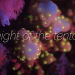 FLUO GAMES: The Night of the Tentacles: Reef Patrol Video Lana Del Rey Songs, Underwater World, Tentacle, Mother Nature, Coral, Magazine, Games, Night, Gaming