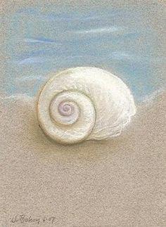 Sea Shell by the Seashore, painting by artist Johanna Bohoy