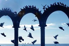 Los Arcos in PuertO Vallarta, another reason WHY I LOVE MEXICO
