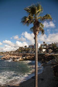 La Jolla Cove | John Bencina Photography