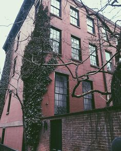 I am patiently waiting for the sun. Luckily in New York doesnt matter what the weather is you will always find something excellent to see like this hairy/leafy building. Happy Friday :) neighborhood. . . . . #shortnotes #myplaces #nyclife #newyorklife #nyc #newyork #newyorkcity #nowyjork #greenwichvillage #winter #us #togetherwecan #couplegoal #couplegoals #walkinnyc #majestic #allthebeautifulthings #polishinamerica #americanlife #lagom #littlethingsinlife #friends #mynyc #polishgirl…