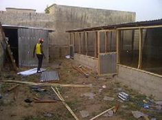 Starting A Poultry Farm (a Blog) - Agriculture (29) - Nigeria