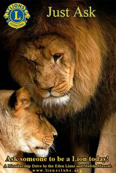 """Lions around the world - do you know how easy it is to grow your club? It can be put into two simple words ... """"Just Ask"""" .... When last have you asked someone to be a Lion? Try it ... let's grow Lions worldwide!"""