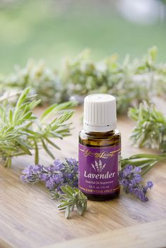 Lavender (Aromatic/Topical) Lavender, a popular essential oil long loved for its calming, soothing, fragrance, is a key ingredient in many of our blends, including Stress Away, Tranquil, RutaVaLa, Forgiveness, and Harmony. When diffused, Lavender adds a clean, fresh scent to any room and is a relaxing addition to baths and body care products.