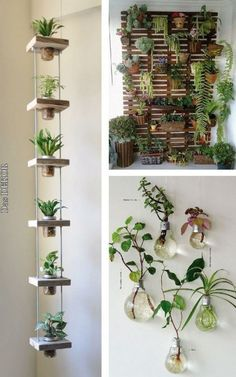 Hanging garden: 38 stunning inspirations to assemble! - Hanging garden: 38 stunning inspirations to assemble! Wedding … Hanging garden: 38 breathtaking inspirations to assemble! Hanging Plants, Indoor Plants, Hanging Herb Gardens, Hanging Flower Pots, Vertical Gardens, Hanging Basket, Indoor Plant Decor, Small Herb Gardens, Diy Hanging Planter