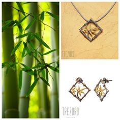 Bamboos are the fastest-growing plants in the world. Isn't it amazing that it can grow up to 120 cm in 24 hours? Fast Growing Plants, Black Rhodium, Botanical Gardens, Sterling Silver Earrings, Black Gold, Bamboo, How To Apply, Pendant, Amazing