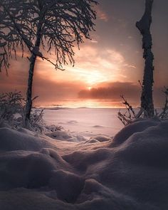 A chilly morning in Enontekiö (via Best Earth Pics on Twitter)