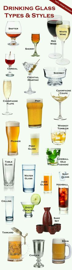 Types Of Drinking Glasses, Types Of Cocktail Glasses, Types Of Wine Glasses, Cocktail Glass Types, Wine Types, Beer Pint Glasses, Whiskey Glasses, Champagne Glasses, Shot Glasses