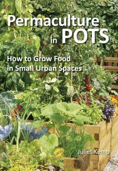 Permaculture in Pots: How to Grow Food in Small Urban Spaces, http://www.amazon.com/dp/B00FPUH24C/ref=cm_sw_r_pi_awdm_4Xkqub08SK8G8
