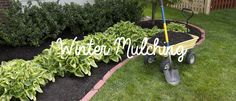 Keeping the garden bed warm in winter is just as important as wearing your own jumper! #PalmersGardenCentre