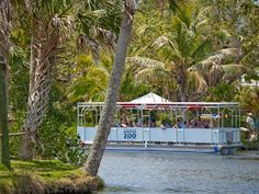 Take a cruise through the Naples Zoo at Caribbean Gardens, Naples FL.