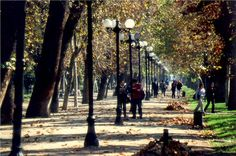 My Favorite Hood in Santiago: Bellas Artes/Lastarria Far Away, Natural, Patagonia, The Past, Sidewalk, My Favorite Things, World, City, Places