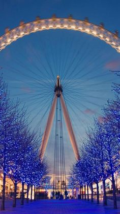 London eye, Night view