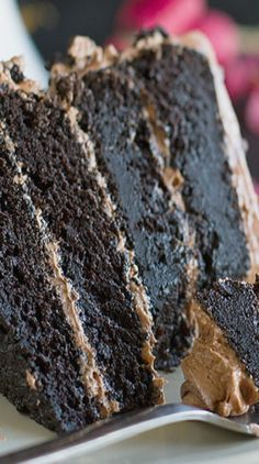 Dark Chocolate Cake with Nutella Buttercream. I had to add more nutella for flavor. Just Desserts, Delicious Desserts, Yummy Food, Dark Chocolate Cakes, Chocolate Desserts, Chocolate Frosting, Chocolate Lovers, Baking Recipes, Cake Recipes