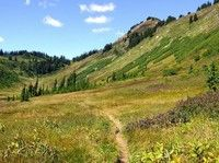 Meander Meadows in the Washington Cascades. Gotta do this before summer is over.