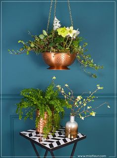 Use a colander to make a hanging planter- MiaFleur