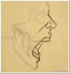 Anatomy Drawing Tutorial drawing a screaming mouth adding skin Sketches, Drawing People, Art Reference Poses, Art Drawings, Anatomy Art, Anatomy Sketches, Art, Art Tutorials, Face Drawing